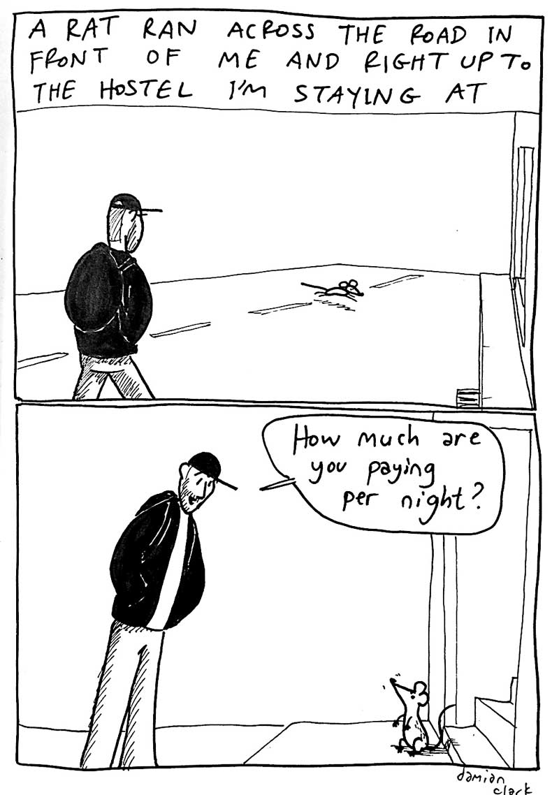 comic manc hostel rat